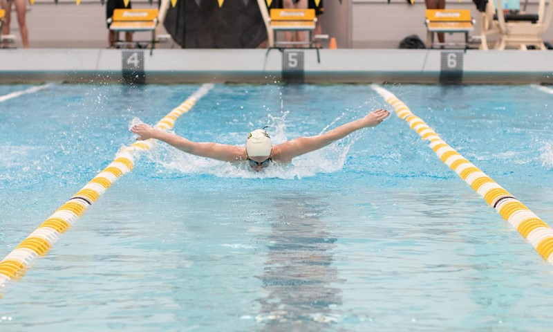 CAA Swimming & Diving Weekly Awards - Dec. 10